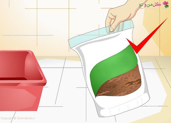 انتخاب و آماده سازی بستر کاشت هویج