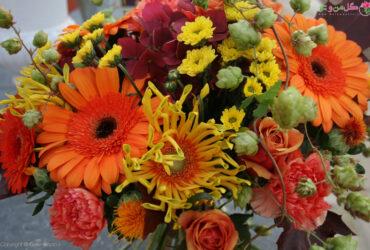 معرفی گلهای پاییزی