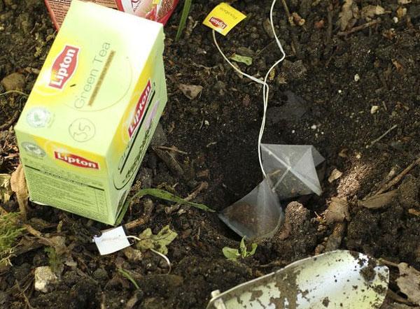 استفاده از چای کیسه ای در کشاورزی