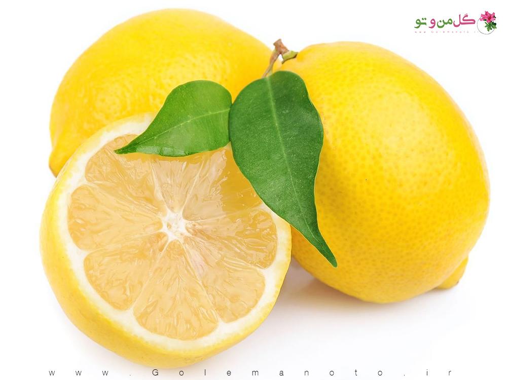 خواص درمانی لیمو ترش-گل من و تو