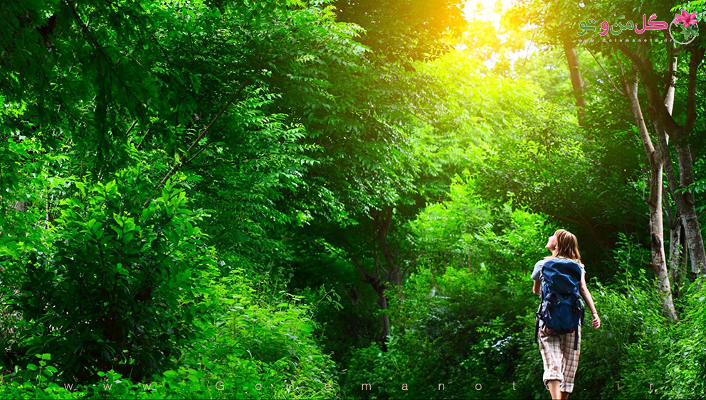 تاثیر طبیعت بر انسان- گل من و تو