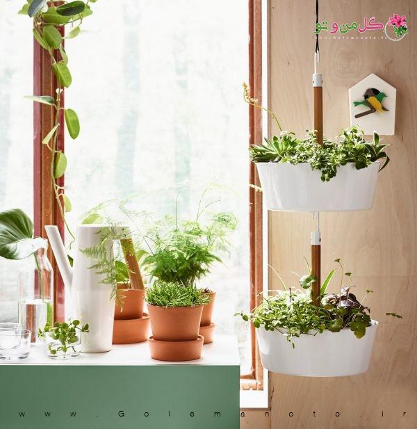 گلدان های آشپزخانه مدرن - گل من و تو