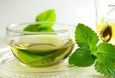 mint tea1 با گیاهان دارویی مفید برای تنگی نفس