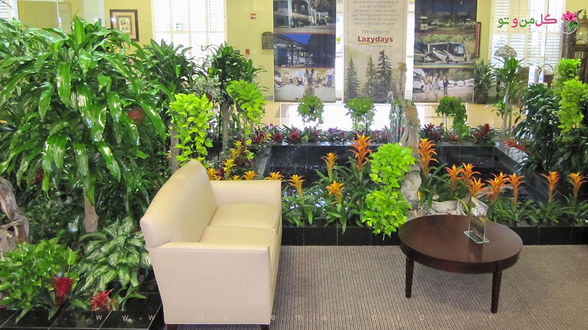 دکوراسیون داخلی با گل و گیاه آپارتمانی