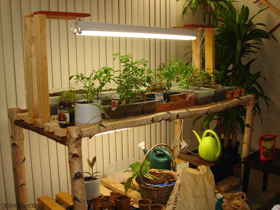 نور مصنوعی برای پرورش گیاهان