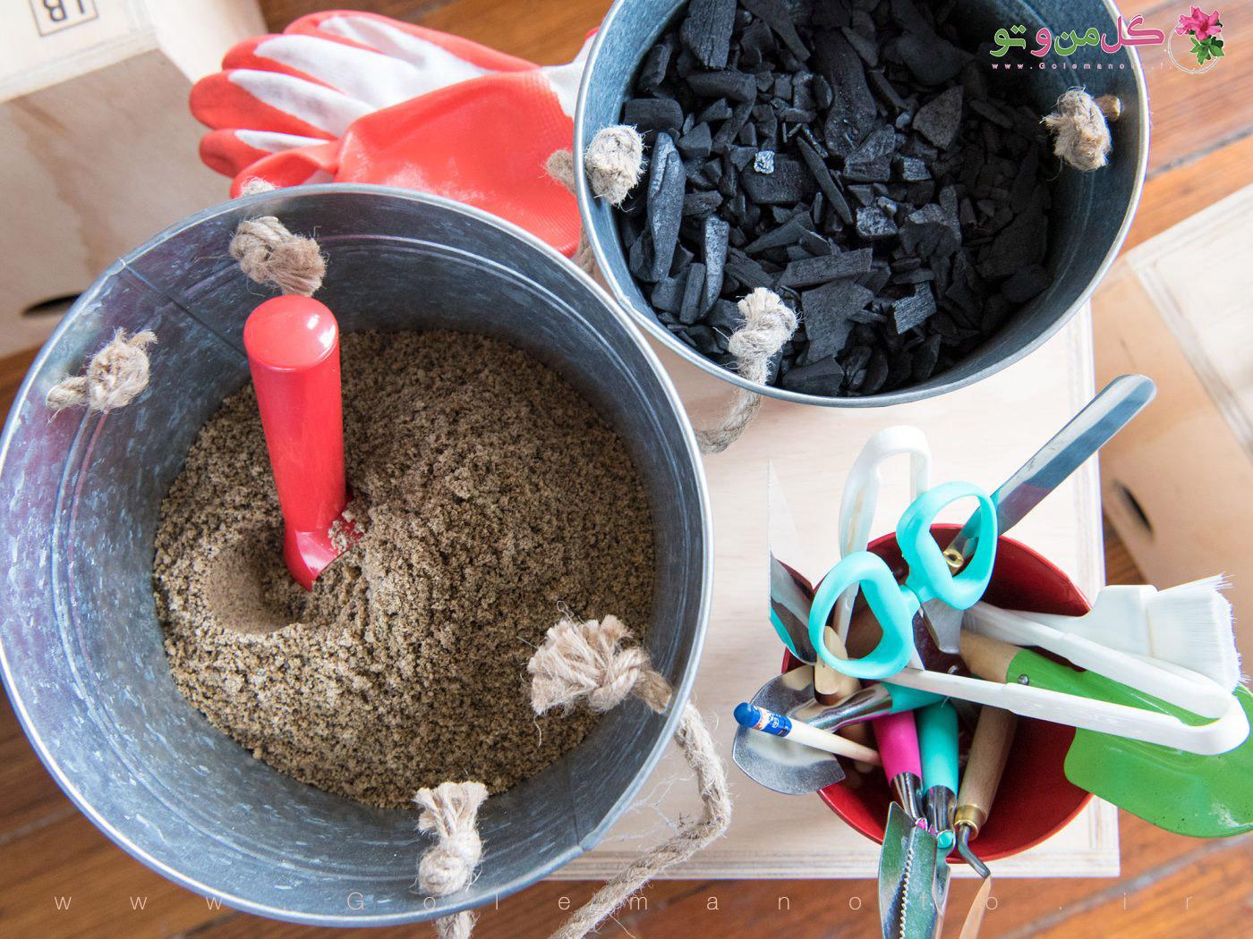 وسایل مورد نیاز برای ساخت تراریوم در خانه