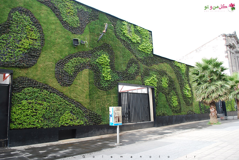 ساخت دیوار سبز - پوشش سبز