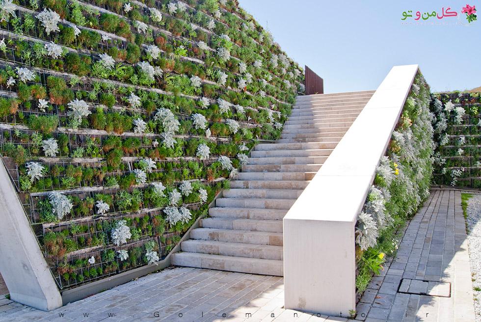 ساخت دیوار سبز برای خانه