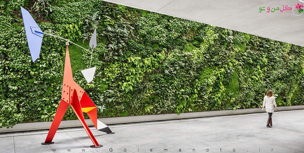 چگونه دیوار سبز بسازیم