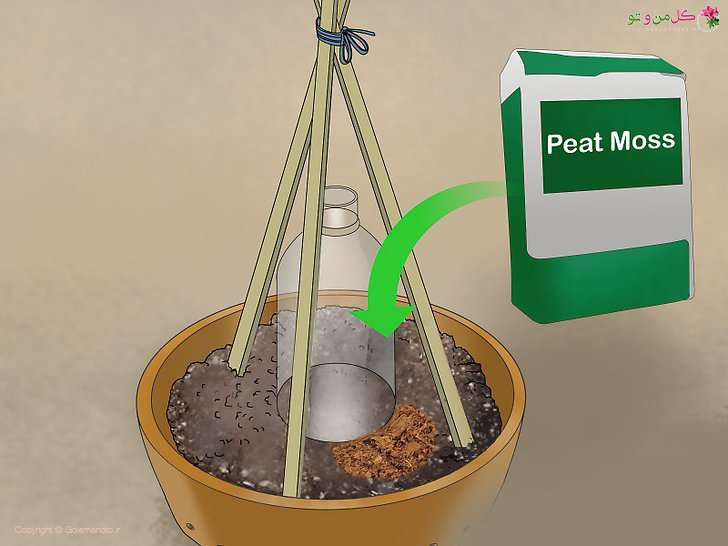 پیت ماس برای کاشت خیار