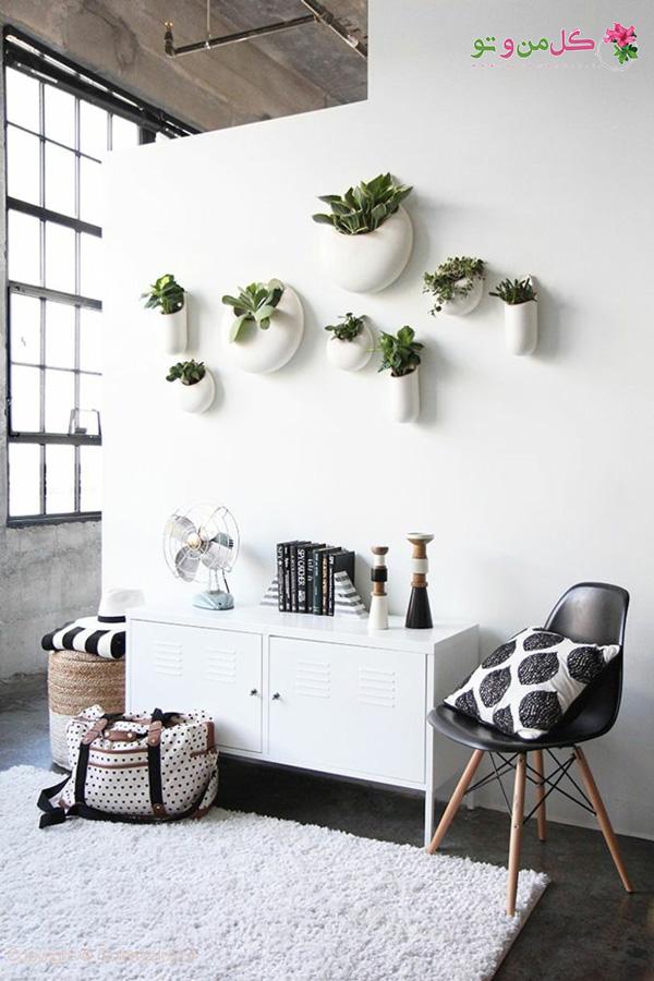 ایدههای چیدمان گیاهان آپارتمانی