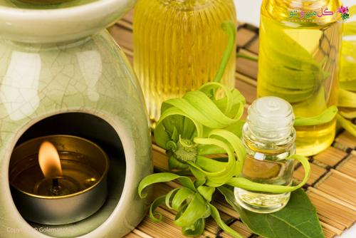 ylang یلانگ و عطر سازی