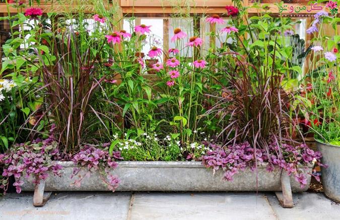 زیباتر کردن باغ - حیاط و باغ