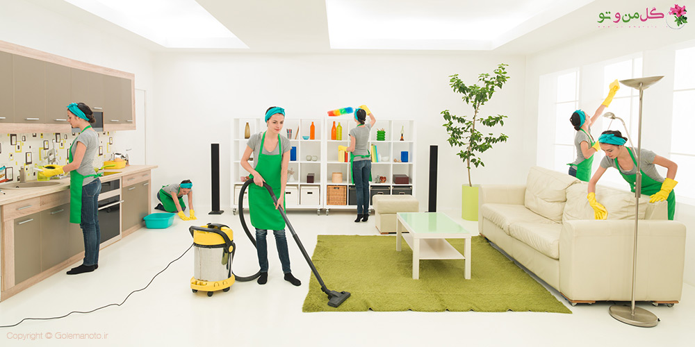 گیاهان تمیز کننده