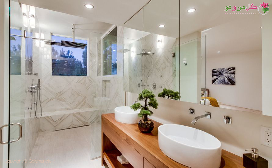 استفاده از بونسای برای حمام و دستشویی
