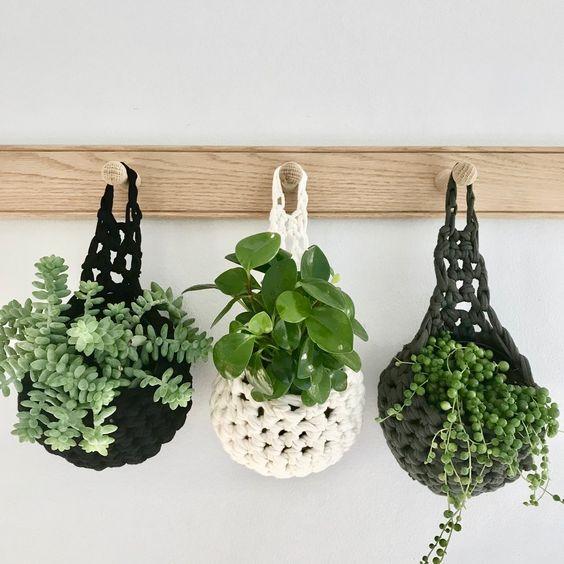 آویز گیاهان آپارتمانی