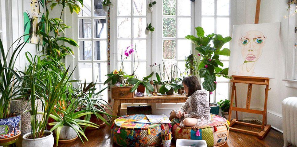 گیاه آپارتمانی فنگ شویی - گیاهان خوش شانس