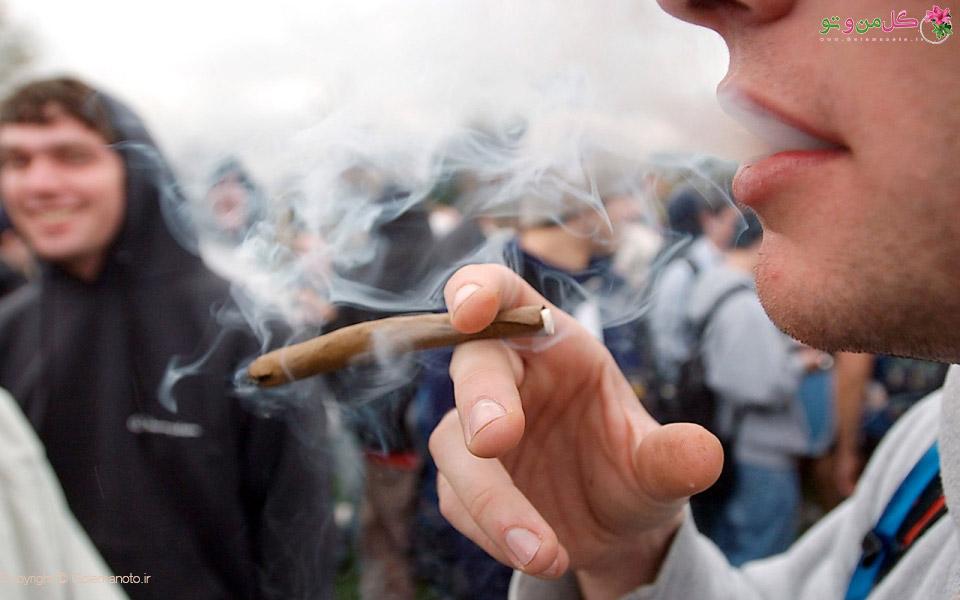 مصرف ماریجوانا