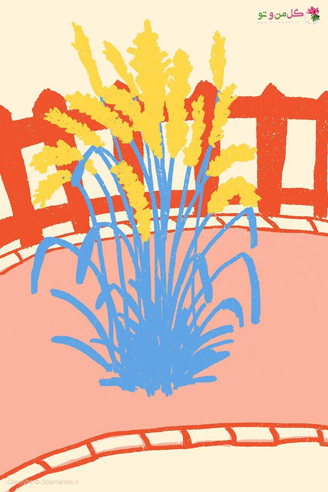 نحوه نگهداری گیاهان زینتی در فضای باز