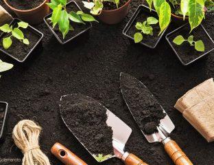 خاک مناسب برای گلدان