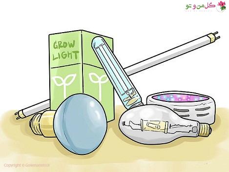انتخاب چراغ برای رشد گیاهان