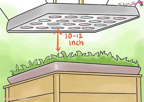 تنظیم ارتفاع چراغ برای رشد گیاهان