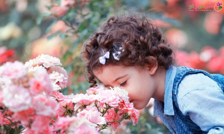 چرا گل ها بوی خوبی دارند؟