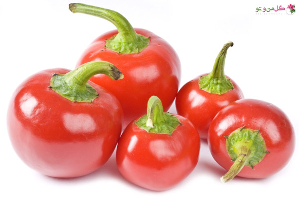 فلفل گیلاسی - Hot-Cherry-Peppers