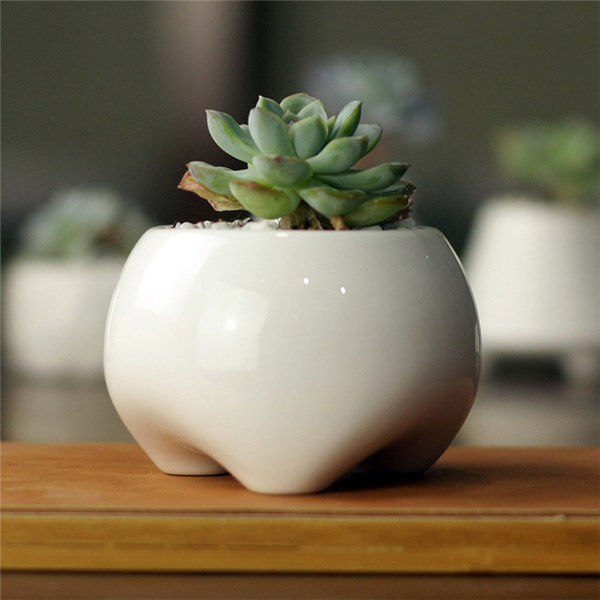 Simple creative White Mini Ceramic teeth shape cute feet Zakka desktop small fleshy flower pot گلدان های خاص مخصوص دکوراسیون خاص