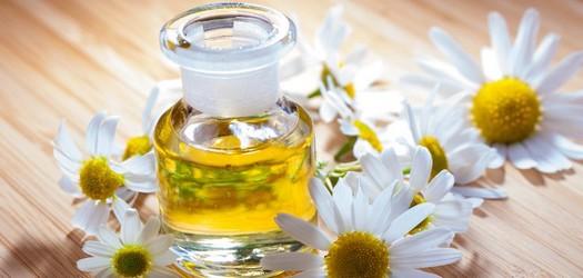 درمان خشکی پوست با گیاه بابونه