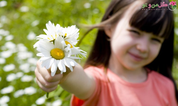 گیاهان مناسب اتاق کودک