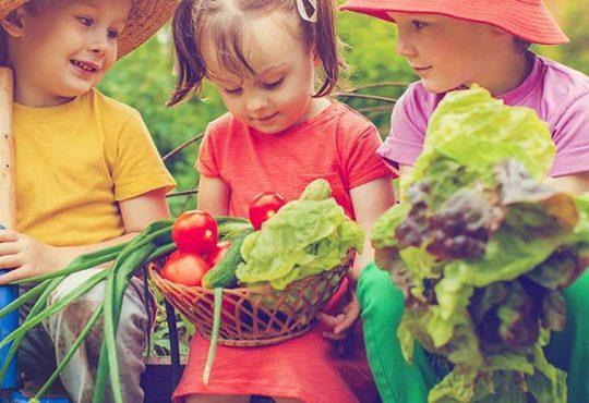 با این 5 گیاه بچه ها را به باغبانی تشویق کنیم