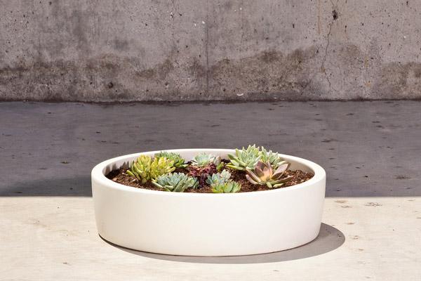 elegant shallow garden pots vintage ceramic elephant planter modern ceramic ceramic planters گلدان های خاص مخصوص دکوراسیون خاص