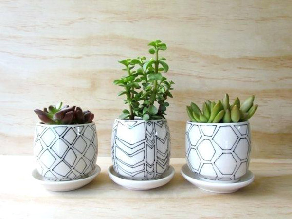 tiny plant pots tiny planters perfect for small succulents herbs small white plant pots uk گلدان های خاص مخصوص دکوراسیون خاص
