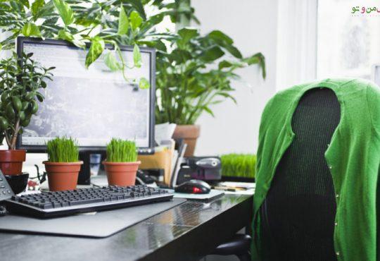 تاثیرات مثبت نگهداری گیاهان