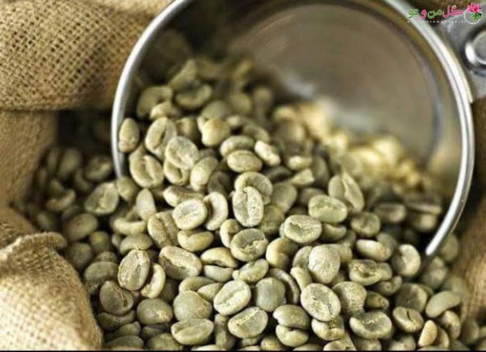 دمنوش قهوه سبز برای چربی سوزی