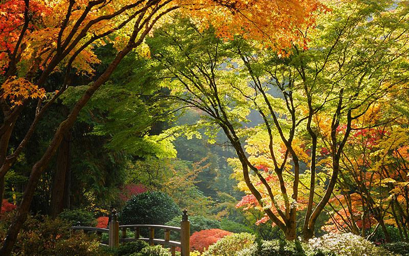 شگفت انگیزترین باغ های جهان