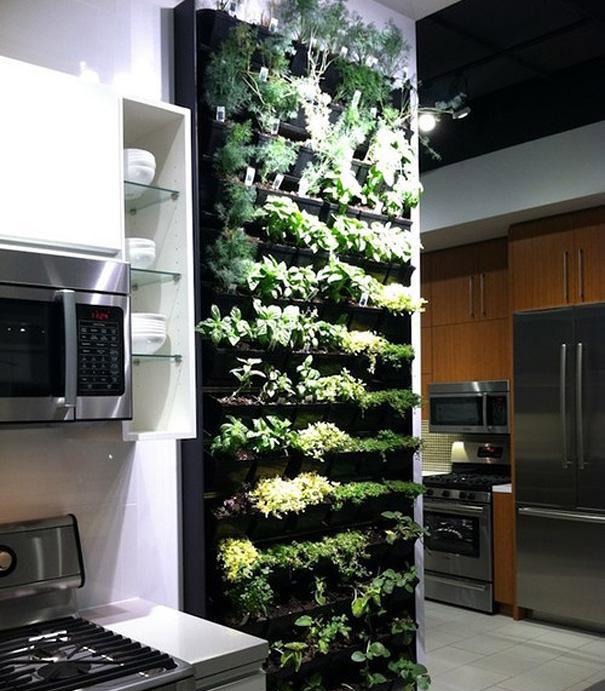 باغچهی عمودی گیاهان در آشپزخانه!