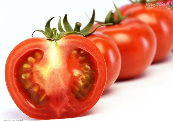 آيا ميتوان وجود نيترات در گوجهفرنگي را از روي شکل ظاهري آن تشخيص داد؟