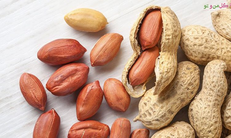 13 خاصیت بادام زمینی و مضرات بادام زمینی
