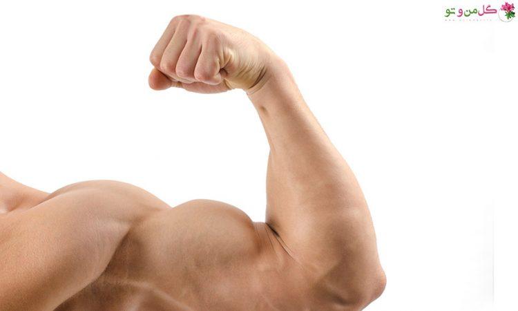 افزایش حجم عضله با راهکار های طبیعی