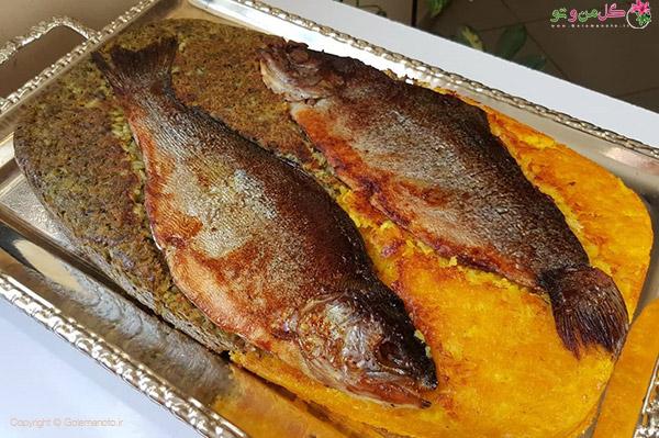 ته چین دو رنگ ماهی