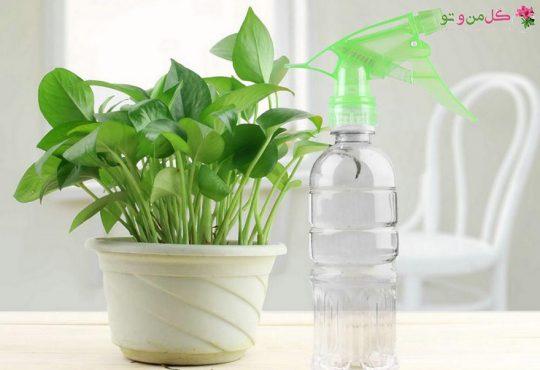 سمپاشی ارگانیک با مواد طبیعی