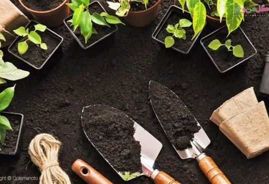 آیا میشه از خاک گلدان دوباره استفاده کرد؟