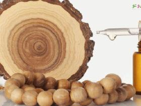 فواید روغن چوب صندل برای پوست و طرز تهیه آن