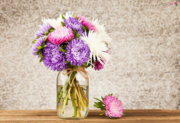 نحوه نگهداری گل های چیده شده