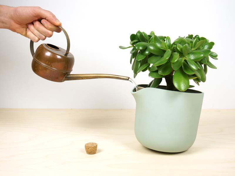 نیاز آبی گیاهان را بدانید