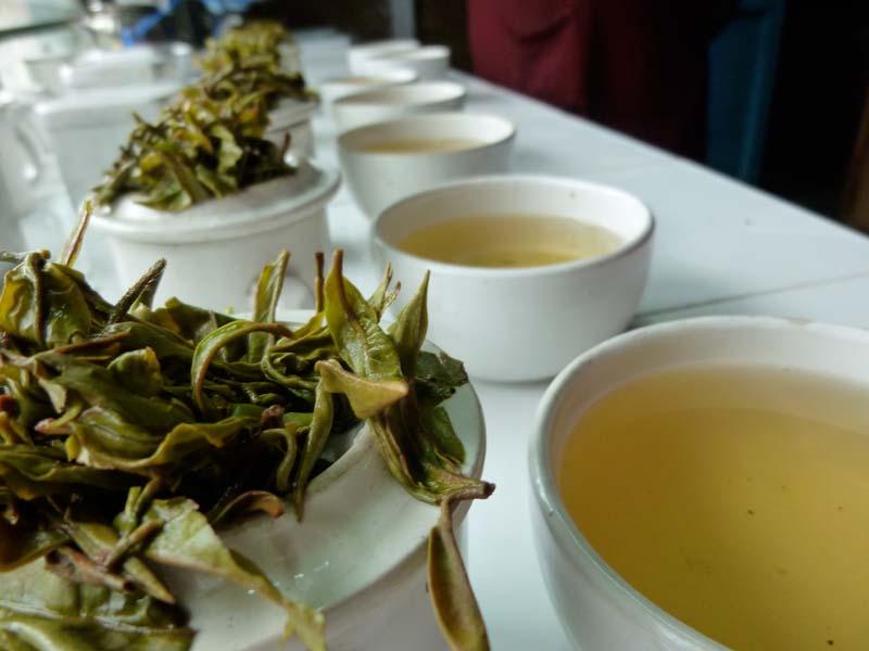 چای دارجیلینگ و خواص بیشمار آن