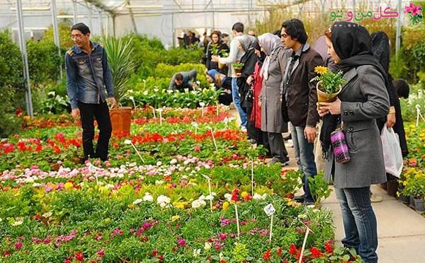 اولین قدم برای خرید یک گل