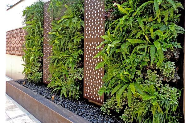 صفر تا صد دیوار گیاهی